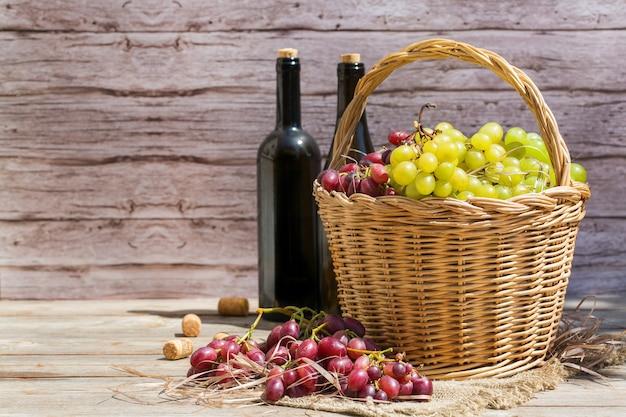 Colheita de uvas para vinho orgânicas frescas na cesta de outono
