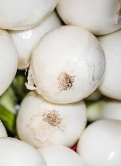 Colheita natural de cebolas frescas pelos agricultores