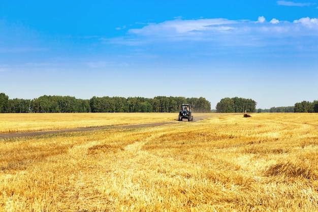 Colheita no outono trator de campos de trigo dirigindo na estrada de campo.