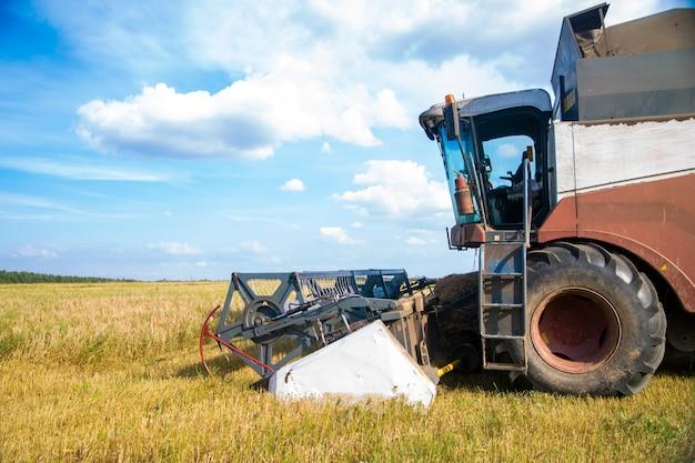 Colheitadeira colhendo campo de trigo dia de verão