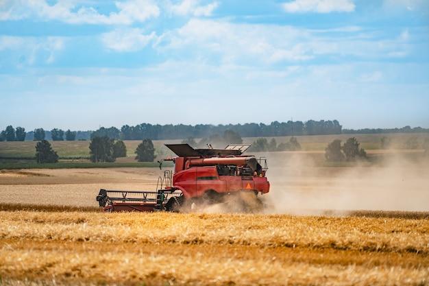 Colheitadeira em ação no campo. colheitadeira. máquina de colheita para colher um campo de trigo.