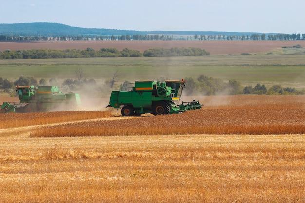 Colheitadeiras colhem grãos no campo