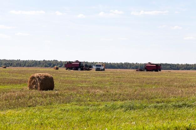 Colheitadeiras e grandes caminhões no campo durante a colheita de grãos, paisagem de verão