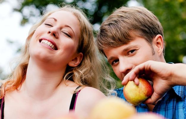 Colhendo, comendo maçãs