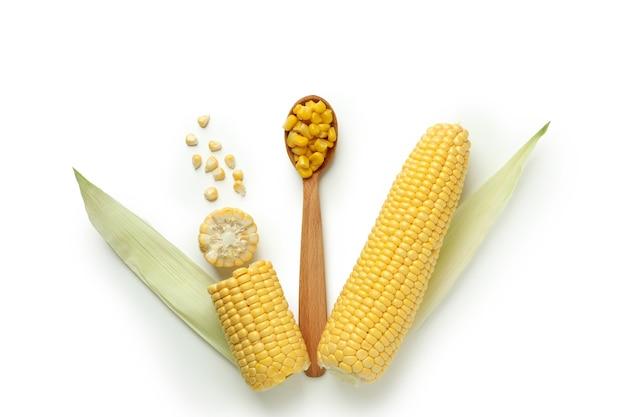 Colher com sementes de milho e milho no fundo branco