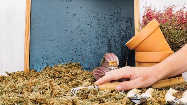 Colher mão de musgo