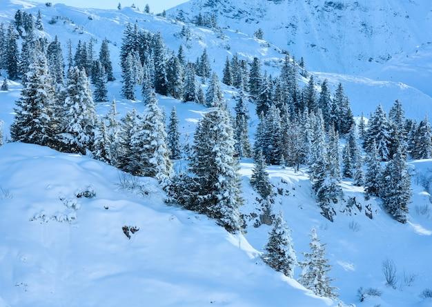Colina de montanha de inverno com abeto nevado na encosta.