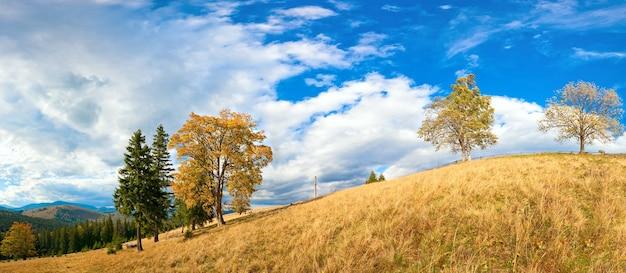 Colina de montanha de outono com árvores coloridas (cárpatos, ucrânia). quatro tiros costuram a imagem.