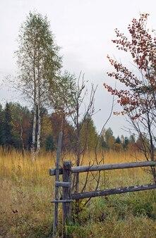 Colina de montanha no outono com bétula e cerca de madeira quebrada na frente