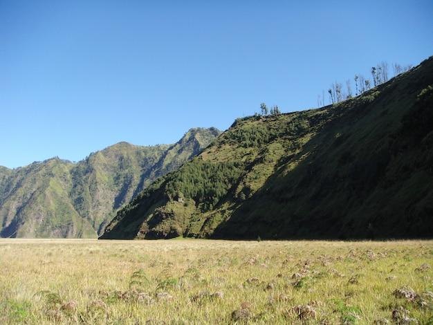 Colinas ao redor da cratera de bromo em java oriental, indonésia