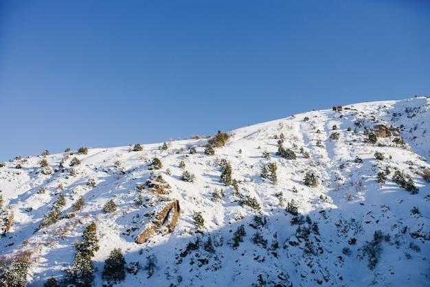 Colinas cobertas de neve, em um dia ensolarado de inverno nas montanhas do uzbequistão