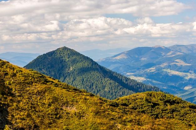 Colinas e picos de montanha dos cárpatos verdes em dia ensolarado de verão