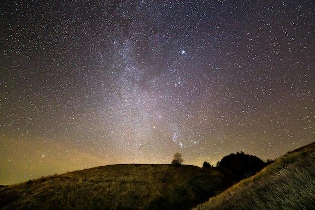 Colinas gramadas verdes escuras, árvore solitária e arbustos à noite sob o céu estrelado do lindo verão azul escuro. fotografia da noite, beleza do conceito de natureza.
