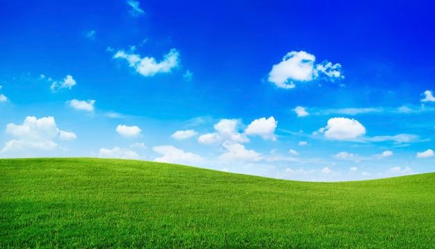 Colinas verdes com céu azul.