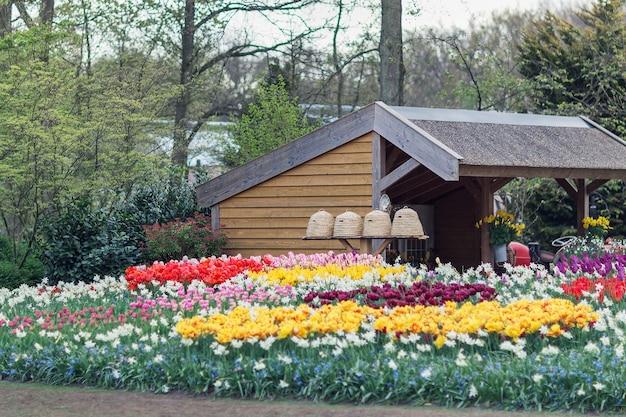Colmeias em um jardim com flores em primeiro plano