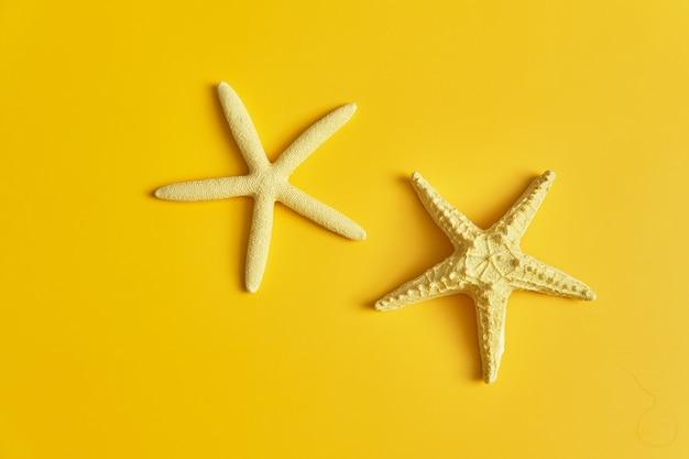 Colocação plana de lindas estrelas do mar inteiras