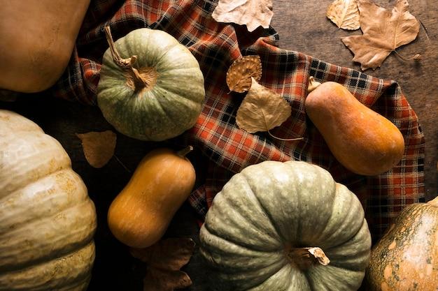 Colocação plana de variedade de abóbora de outono