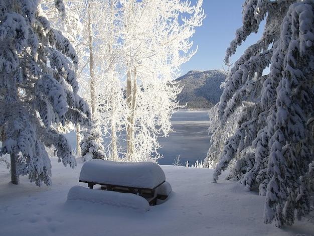 Colômbia lago cariboo inverno canadá british canim