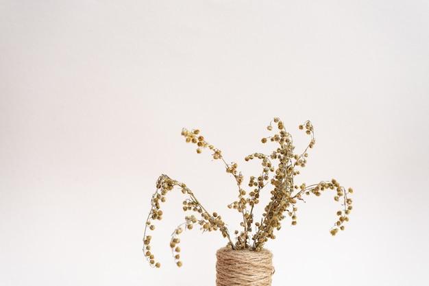 Coloque espigas e ervas secas em vasos sobre um fundo rosa claro.