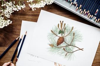 Coloração ilustração