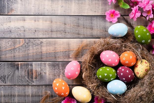Colorido dos ovos da páscoa no ninho com flor e a pena cor-de-rosa no fundo de madeira.