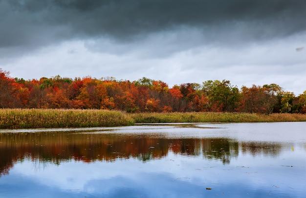 Colorido, outono, floresta, lago, rio, céu, nuvens, cirrus