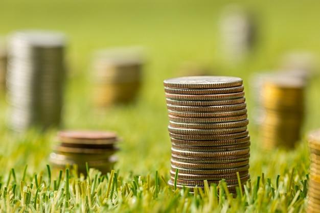 Colunas de moedas na grama