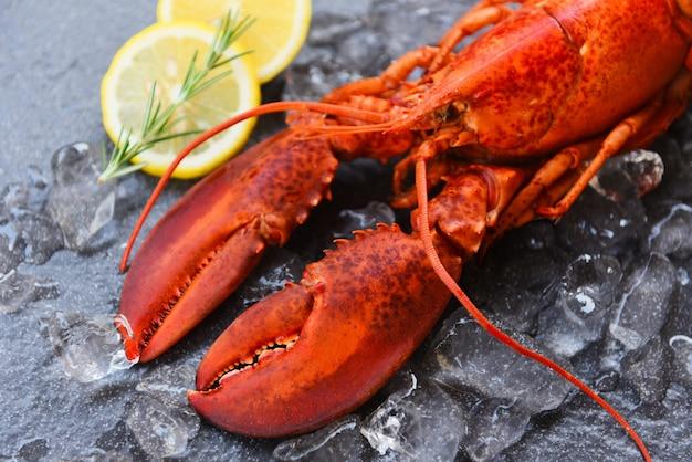 Comida de lagosta fresca em um prato preto fundo - marisco de jantar de lagosta vermelha com ervas ervas alecrim limão servido mesa e gelo no restaurante comida gourmet saudável lagosta cozida cozinhada