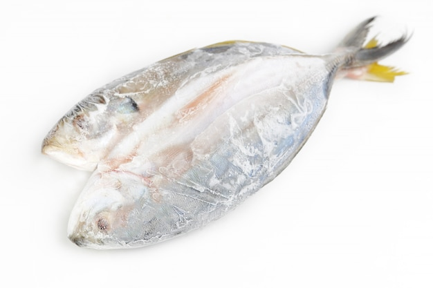 Comida de peixe fresco no gelo