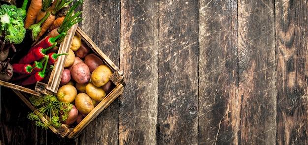 Comida orgânica. colheita de legumes frescos em caixas velhas.