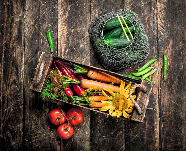 Comida orgânica. colheita fresca de legumes em uma mesa de madeira.