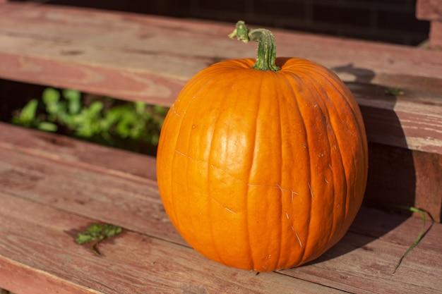 Comida vegetariana madura, fresca e saudável com vitaminas uma abóbora laranja repousa nos degraus