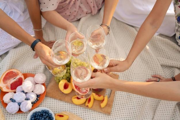 Companhia de amigas desfruta de um piquenique de verão e levanta copos com vinho