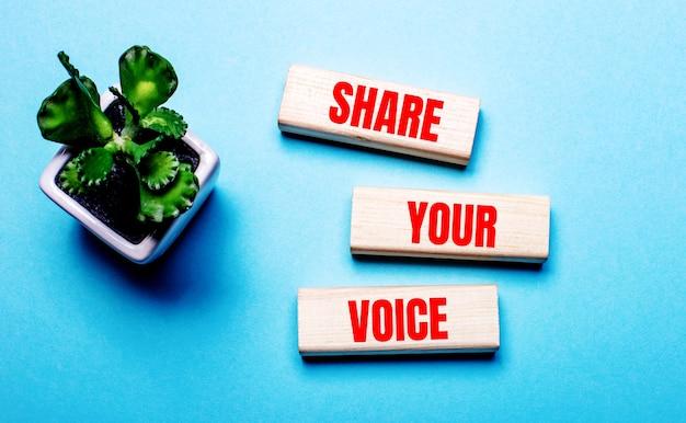 Compartilhe sua voz está escrito em blocos de madeira em uma superfície azul claro perto de uma flor em um vaso
