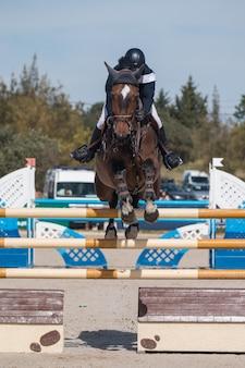 Competição de salto de cavalo
