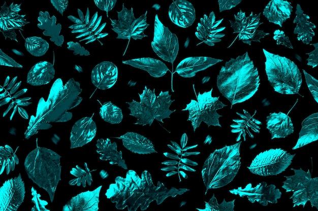 Composição aberta de diferentes folhas de outono na luz de neon