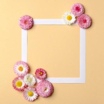 Composição abstrata com flores sobre fundo amarelo pastel. layout criativo mínimo. primavera