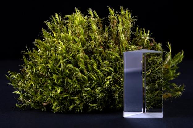 Composição abstrata com musgo e pódio de vidro para apresentação dos produtos