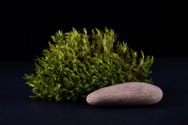 Composição abstrata com pódio de musgo e pedra para apresentação dos produtos