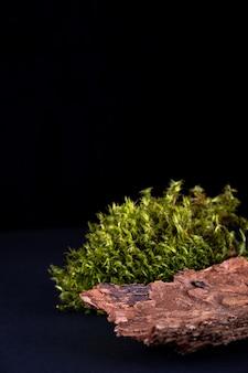 Composição abstrata com pódios de casca de árvore e musgo para apresentação de produtos