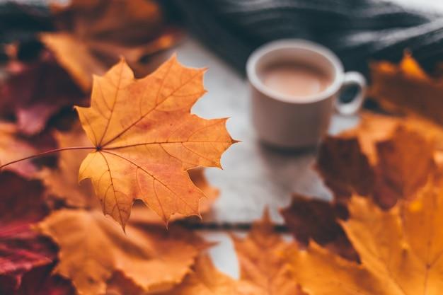 Composição aconchegante para casa de outono, uma xícara de café com folhas de plátano. foco suave seletivo