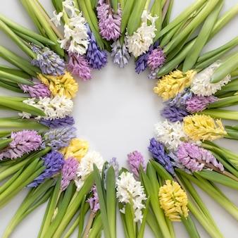 Composição arredondada de belas flores de verão jacinto com hastes e círculos de plantas florais