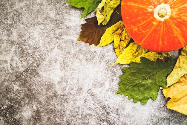 Composição com abóbora e folhas murchas