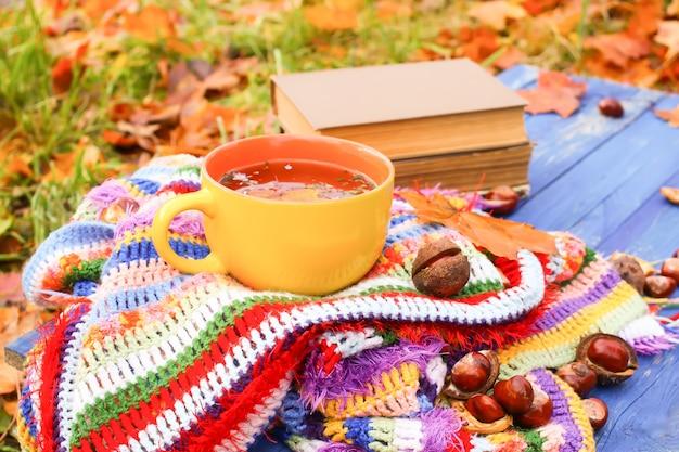 Composição com cerâmica amarela xícara de chá de ervas e folhas de outono na manta listrada quente quadriculada brilhante no jardim outono. livros antigos e castanhas-da-índia em placas de madeira azuis