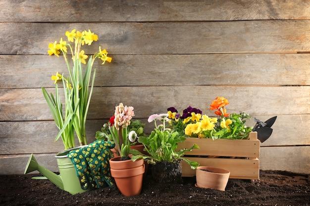Composição com flores e ferramentas de jardinagem na mesa de madeira