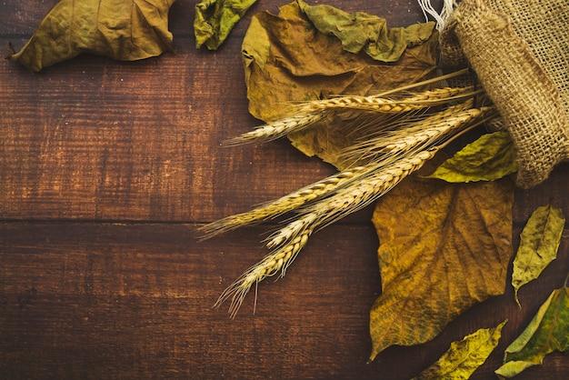 Composição com folhas secas e saco de aniagem