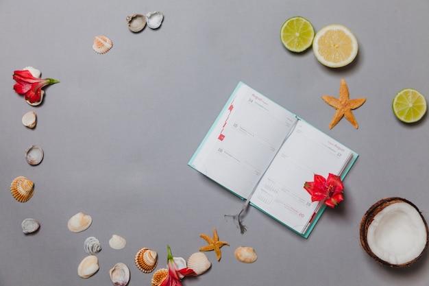 Composição com frutas, conchas, flores e diário
