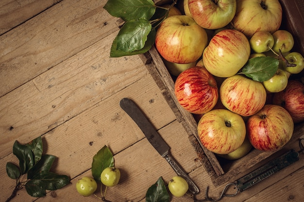 Composição com maçãs frescas na tabela velha. foto tonificada