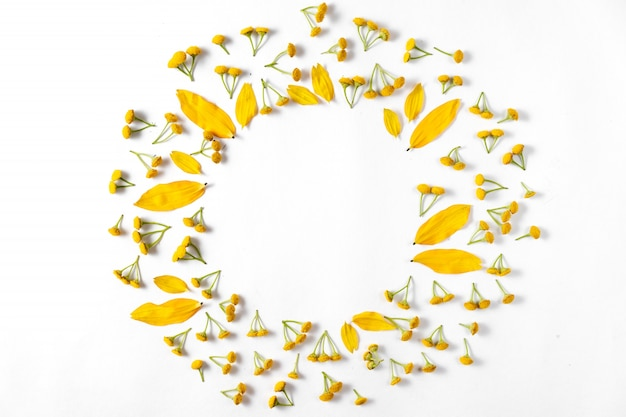 Composição criativa de outono. grinalda feita de folhas, flores sobre fundo branco.