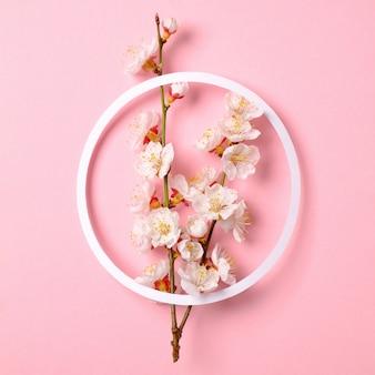 Composição criativa leiga plana: papel em branco de círculo e ramo de sakura floresce